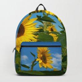 Sunflowers 11 Backpack