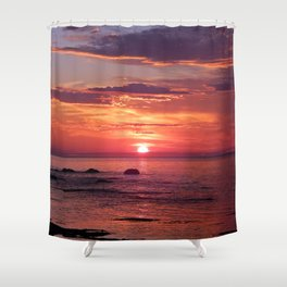 The Flamboyant One Shower Curtain