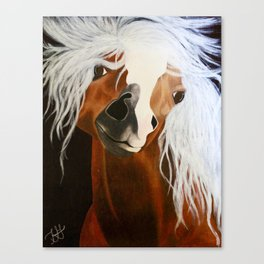 Neigh-belline Canvas Print