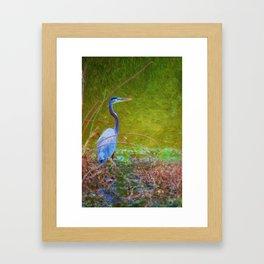 In the reeds Framed Art Print
