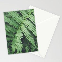 Fern Bush Nature Photography   Botanical   Plants Stationery Cards