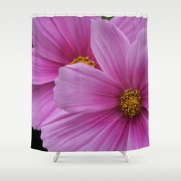 Two Pink Flowers Macro Shower Curtain