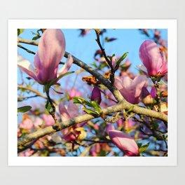 Bright Blooms Art Print