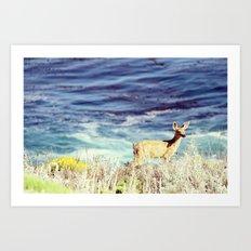 Baby Bambi Art Print