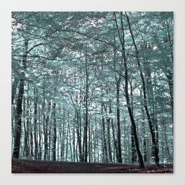 cold forest VI Canvas Print