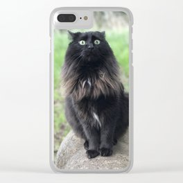 Duchess Surprised Clear iPhone Case