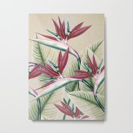 plant 2 Metal Print