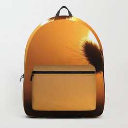Rising Sun Backpack