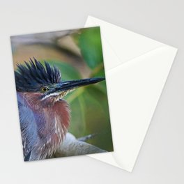 The Green Heron at Ding III Stationery Cards