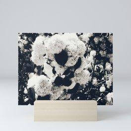 High Contrast Black and White Snowballs Mini Art Print