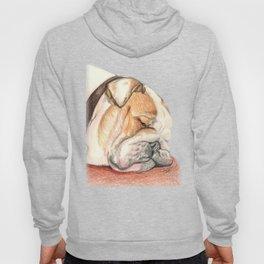 English bulldog Alfie Hoody
