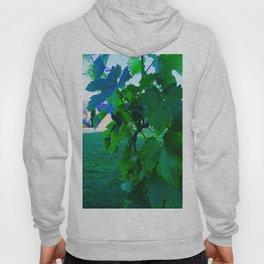 Grape Leaves Photography Hoody