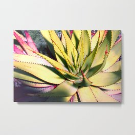 Cactus in neon colour pop photograhy no.9 Metal Print