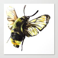 bug Canvas Prints featuring bug by Xenia Pirovskikh