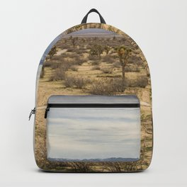 Saddleback Butte State Park Backpack