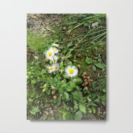 Walk Among The Faeries Metal Print