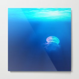 Jellyfish are beautiful Metal Print