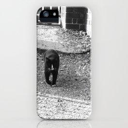 Railway Cat Greeting iPhone Case
