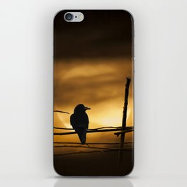 Never More Quoth The Raven iPhone Skin