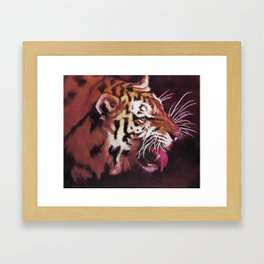 Velvet Tiger Framed Art Print
