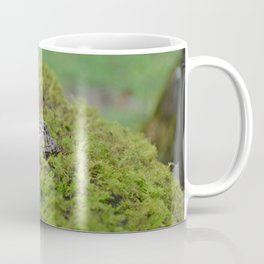 Little frog in Japan Coffee Mug