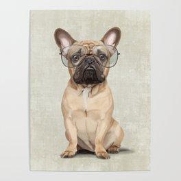 Mr French Bulldog Poster