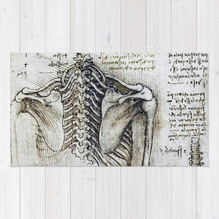 Leonardo Da Vinci Human Body Sketches Skeleton Rug By Drawspots