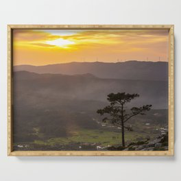 A lonely pine tree in the mountain Serving Tray