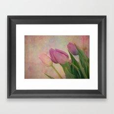Springtime Arrival Framed Art Print