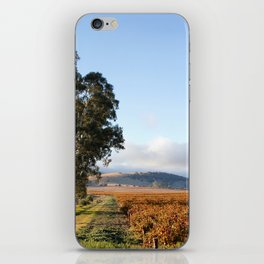 Barossa Valley Autumn Sunshine iPhone Skin