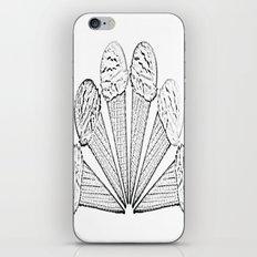 Icecram cones iPhone & iPod Skin