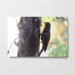 Flicker and baby Metal Print