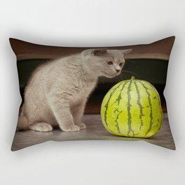 British gray kitten play with a juicy water-melon Rectangular Pillow