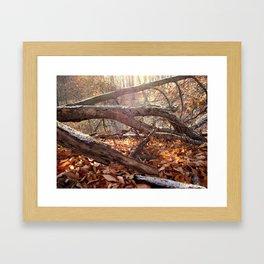 Fallen Archway Framed Art Print