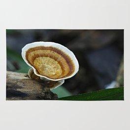 Fungi on tree stump Rug