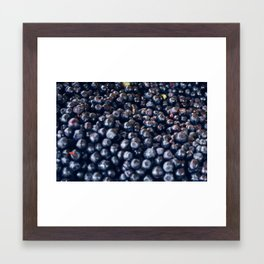Blueberries & berries blue Framed Art Print