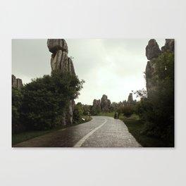 Rain Path Canvas Print