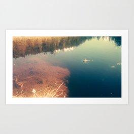 lakefrog#1 Art Print
