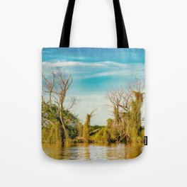 Parana River, San Nicolas, Argentina Tote Bag