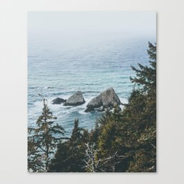 Pacific Northwest Canvas Print