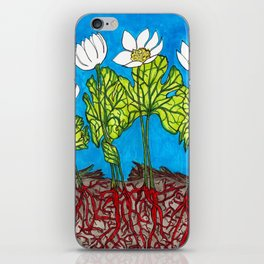 Bloodroots - Sanguinaria canadensis iPhone Skin