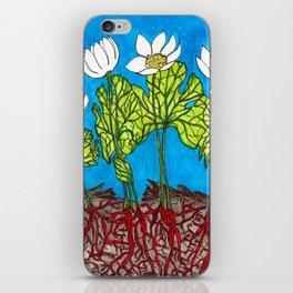 Bloodroots - Sanguinaria canadensis iPhone Skin