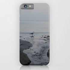 It all leads to the ocean.  Slim Case iPhone 6s
