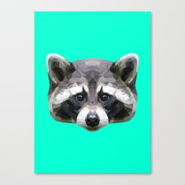 Raccoon // Mint Canvas Print