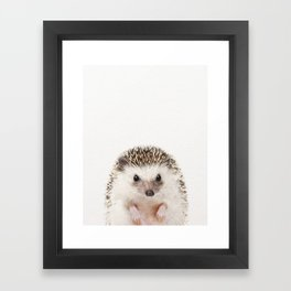 Baby Hedgehog, Baby Animals Art Prints by Synplus Framed Art Print