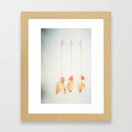 Arrows of a Feather Framed Art Print