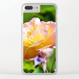 orange cream Clear iPhone Case