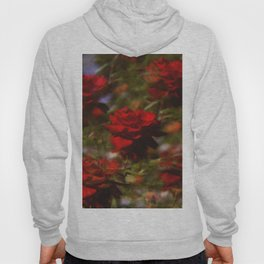 in an ideal world Hoody