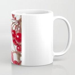 Ardisia Crenata Coffee Mug