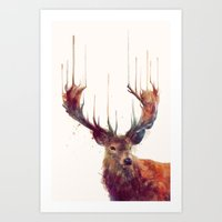 amy sia Art Prints featuring Red Deer // Stag by Amy Hamilton